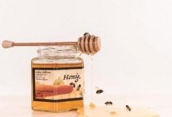 Honig064