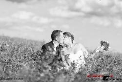 WeddingQ076